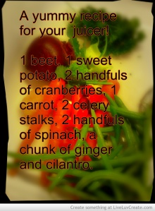 michelles_juicer_recipe-669557